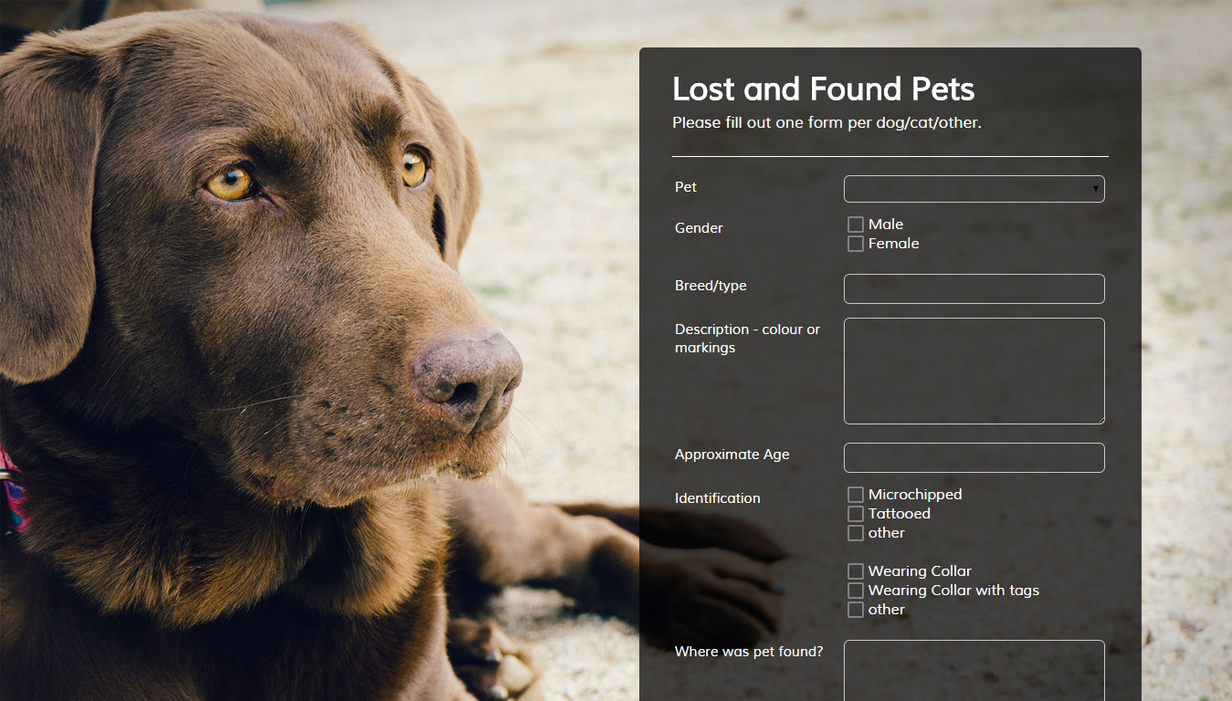 Pet Lover - Form Theme Store